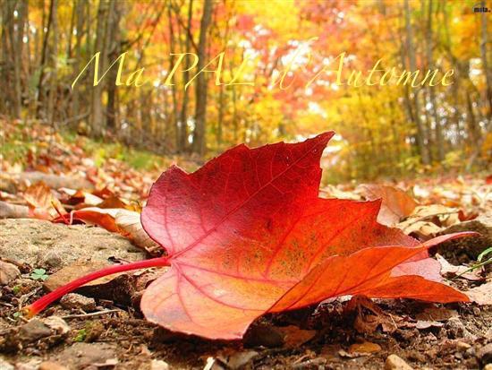 PAL d'automne